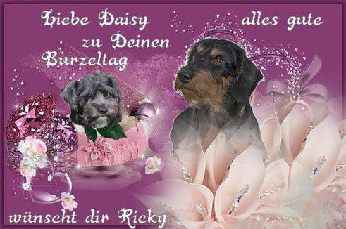 An den Beitrag angehängtes Bild: http://img29.dreamies.de/img/106/b/mes5jxwfg08.jpg