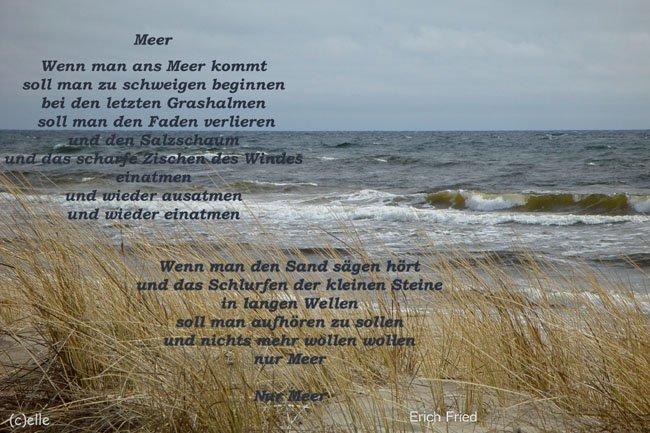 Meeresrauschen Blogs Im Seniorentreff