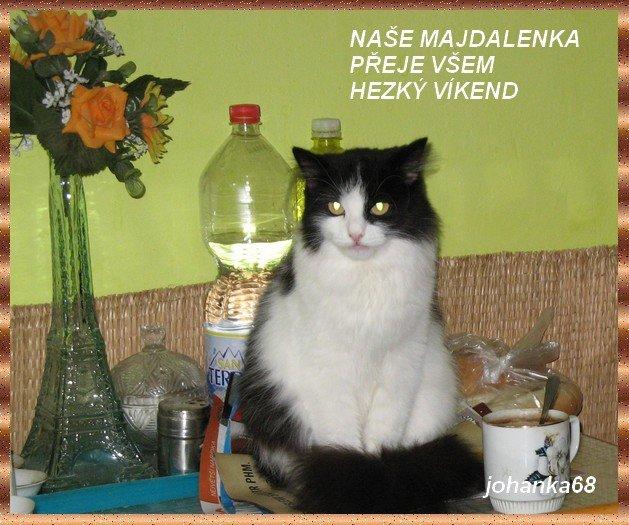 An den Beitrag angehängtes Bild: http://img29.dreamies.de/img/252/b/zudbqeewp9u.jpg